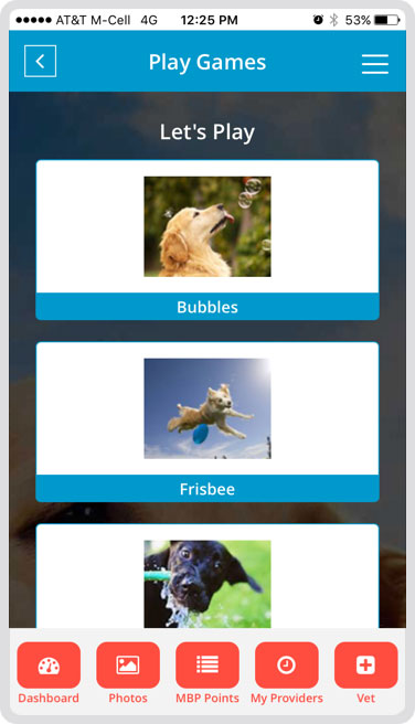 Fun Games for your Dog